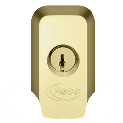 ASEC High Security Rim Cylinder Pull With Cylinder